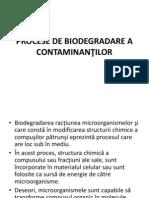 ecotoxicologie, procese biodegradare