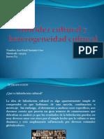 1 Hibridez y Heterogeneidad Cultural