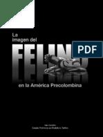 2010 Felino