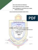 INFORME 3 DENSIDAD.doc