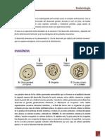 exposición embriología
