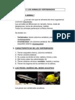 RESUMEN-T2-1.docx