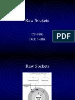 Raw Sockets