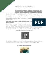 Botrytis Cinerea Bases Epidemiologicas y Control (Bayer)
