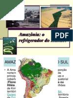 Amazonia aula.ppt