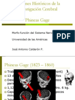 Clase 4 Phineas Gage