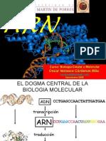 ARN[1]