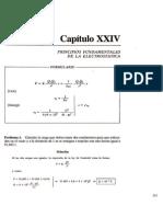 Capitulo 24 - Principios Fundamentales de La Electroestatica