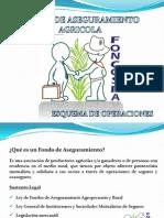13e8d4d27d4 Fondo de Aseguramiento Foncospa.pdf