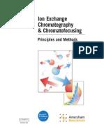 pdf cromatografia intercambio ionico.pdf