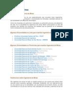 Ingeniería de Minas - Universidades y Testimonios.docx