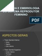 01- Anatomia e Embriologia Do Sistema Reprodutor Feminino