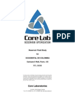 CC3 Well PVT Final Report