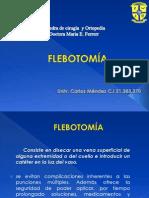 flebotomia