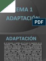 62969467-adapptacion-Y-sus-variables-biologica-y-social.pptx