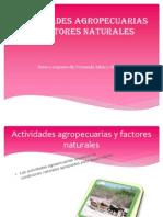 Actividades agropecuarias  y factores naturales.pptx