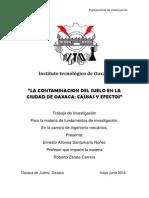 LA CONTAMINACION DEL SUELO EN LA CIUDAD DE OAXACA CAUSAS Y EFECTOS(original).docx