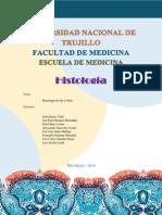 Informe Ojo y Oido Histología