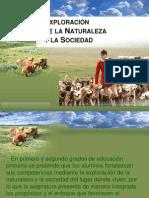 6 Exploración de la naturaleza 1°.ppt