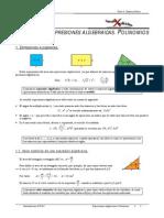 Expresiones algebraicas. Polinomios