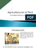Agricultura en el Peru