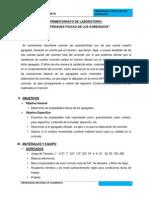 Informe I Agregados El Gavilan - 2014 (1)