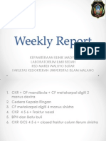 Weekly Report. 20112013pptx