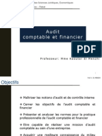 Audit Comptables Et Financiers