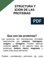 2_estructura y Funcion de Las Proteinas (2) (1)