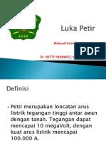 Luka Petir
