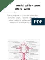 Poligonul Arterial Willis