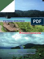 Potensi Investasi Provinsi Lampung 2011