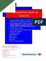bank of america flyer final 2