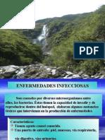 TS14_ENFERMEDADES INFECCIOSAS