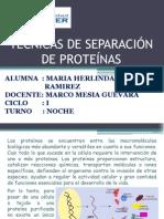 Tecnicas de Separación de Proteínas