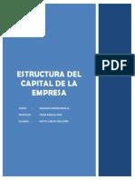 Diaz Zeña - Estructura de Capital