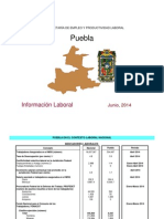 Panorama Laboral Poblanos 2014