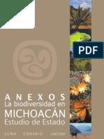 A Pen Dices Michoacan 2005