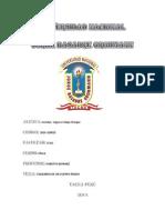 DOTOS OBTENIDOS.docx