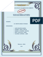 Caipo Infantes Fany_farmacia y Bioquimica_responsabilidad Social 2