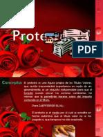 Tema 5- Protesto