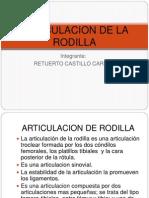 ARTICULACION de Rodilla Cariina