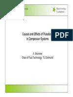 Pulsation Course Bruemmer