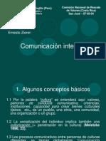 Comunicacion Intecultural Zierer Mb