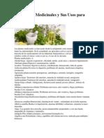 230 Plantas Medicinales y Sus Usos Para La Salud