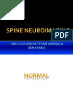 2. Spine Neuroimaging Dr. Bekti