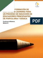 Practicum Mentoria Libre