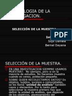 Metodologia de La Investigacioncapitulo8