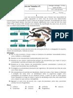 FT5_Taxonomia
