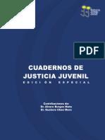 Cuadernos Justicia Juvenil Ed Especial